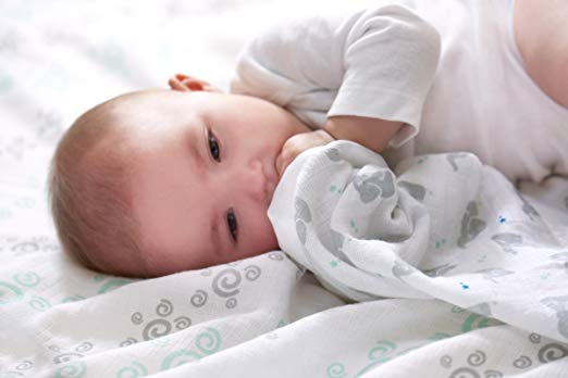 Your 7 month old should have fallen into a daily routine with sleep, feedings, & naps. If not, help get your infant on a routine with these tips and guide.  Having a consistent and predictable routine will decrease fussiness and irritability and make for a happier and more pleasant infant. Follow these tips and schedule for feeding, naps, sleep, and play.
